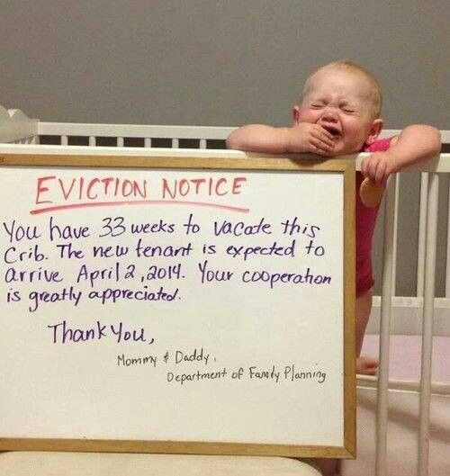 Crib eviction notice Funny Pinterest Crib and Pregnancy - eviction notice