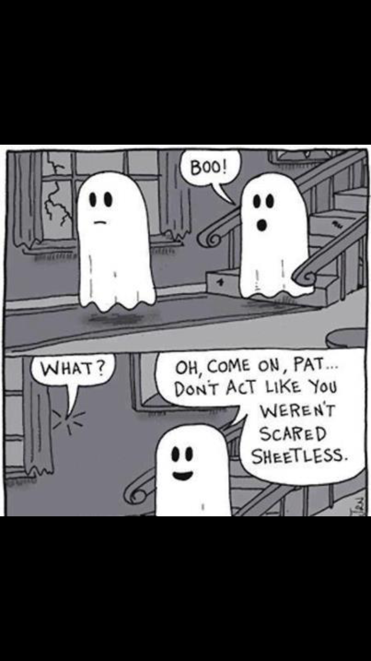 Pin by Debbie Thomas Martin on Halloween Funny halloween