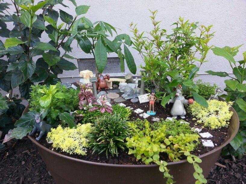 Jungle Book Garden Miniature Garden Fairy Garden Garden