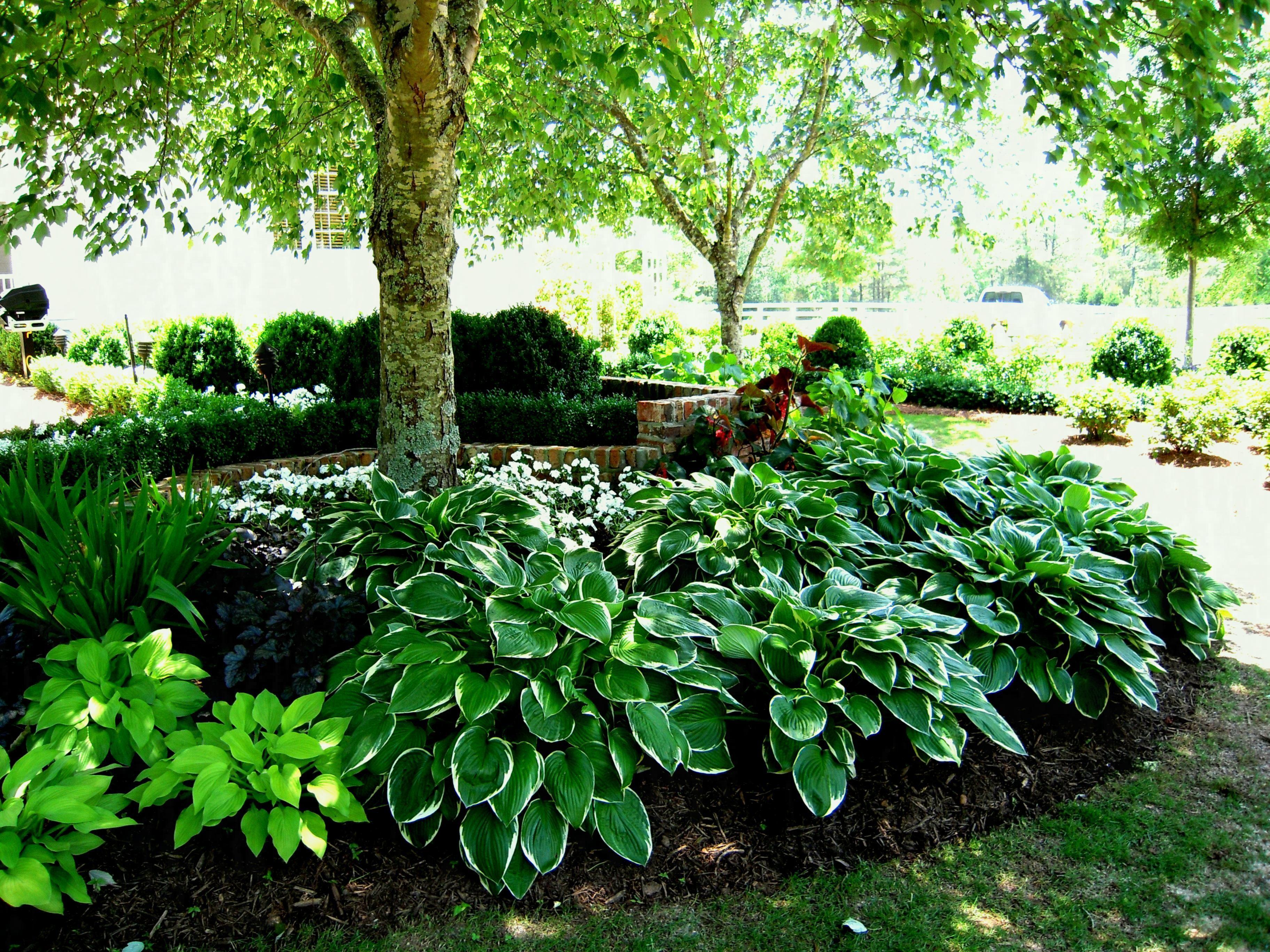 Square Flower Bed Ideas Landscape Designs Pineville Front Garden