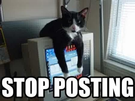 Facebook Link Posts Crush Photo Posts Stop Posting So Many Photos Cats Funny Cats Funny Animals