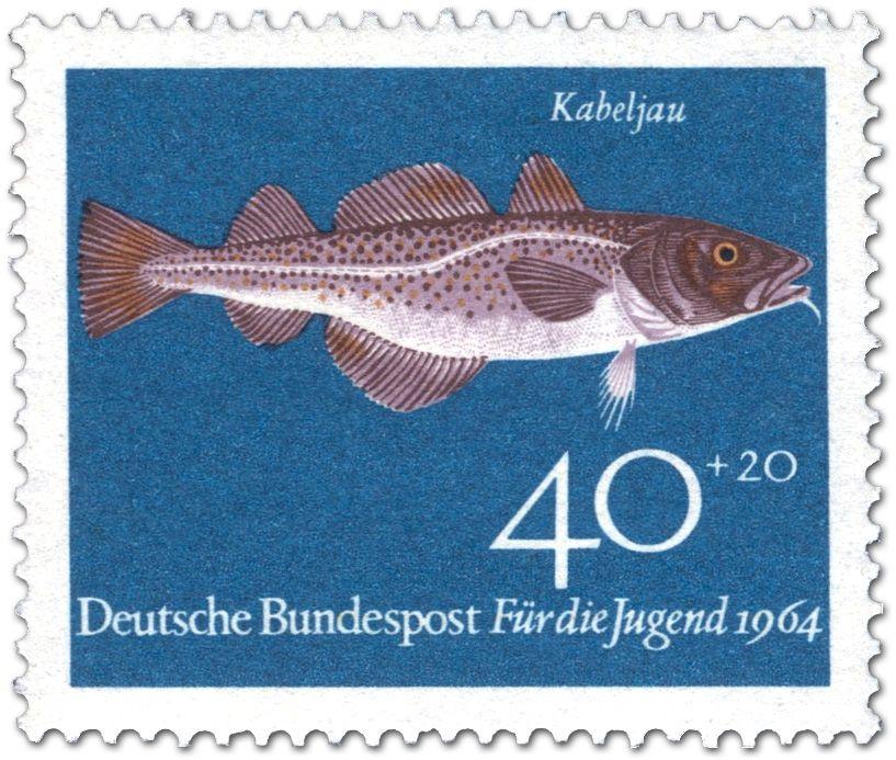 Cod Deutsch Fisch