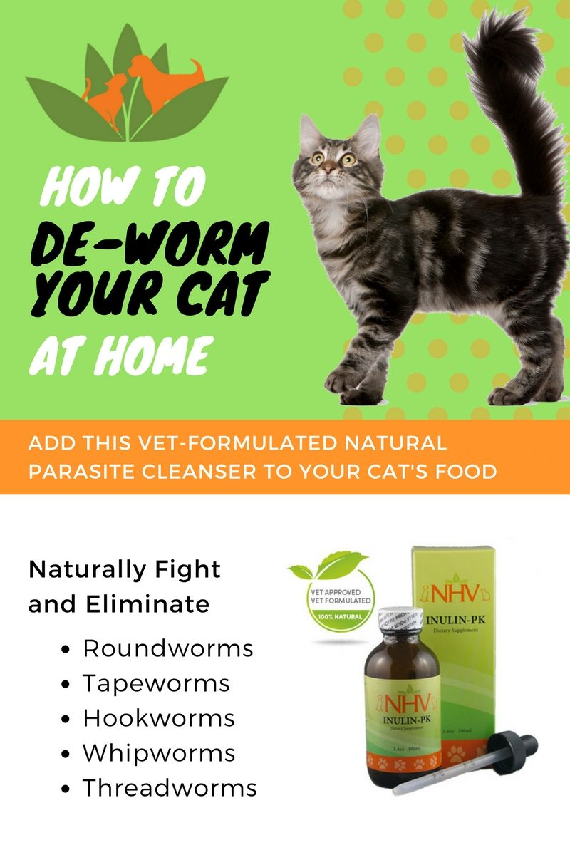 Inulin Pk For Cats Cat Dewormer Cat Care Tips Cat Care
