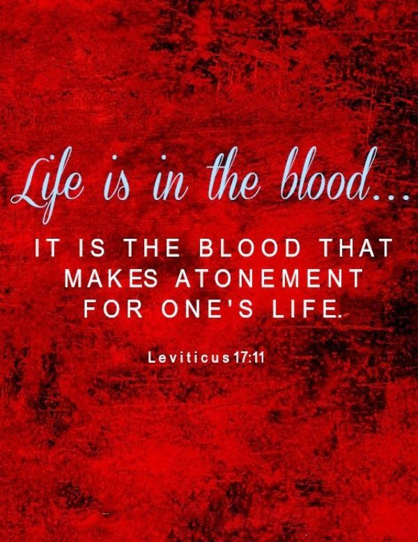 Image result for image of Leviticus 17 Life is in the blood