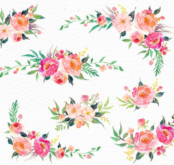 Watercolour Floral Clip Art-Gentle Blooms/ Individual PNG files/Hand ...