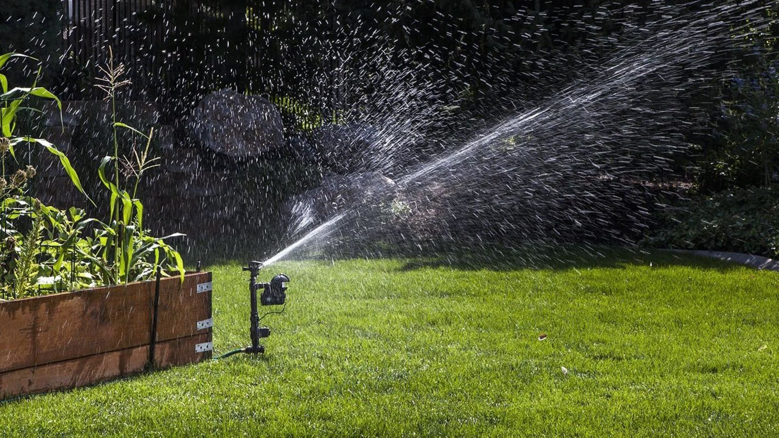 Kinja Deals Keep Intruders Off Your Lawn With This 55 Yard Enforcer Orbit Yard Enforcer Motion Activat Sprinkler Motion Activated Sprinkler Water Sprinkler