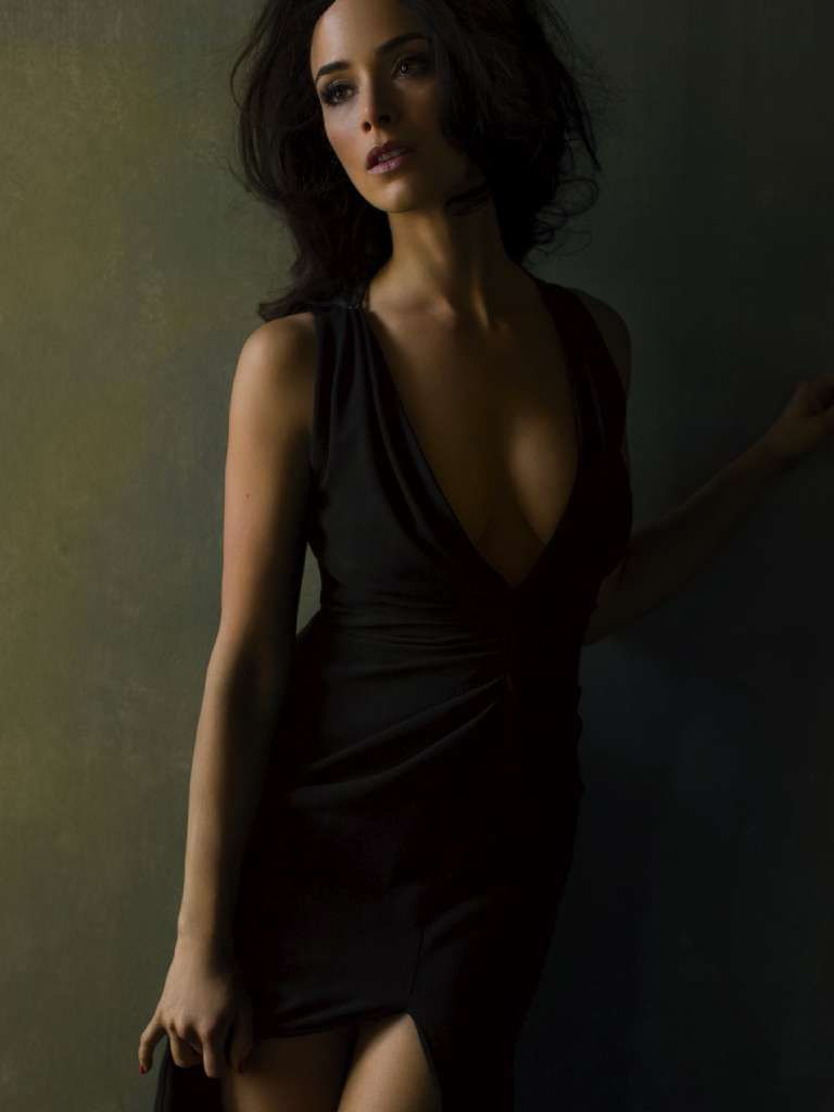Erotica Abigail Spencer naked (78 photos), Sexy, Is a cute, Twitter, braless 2020