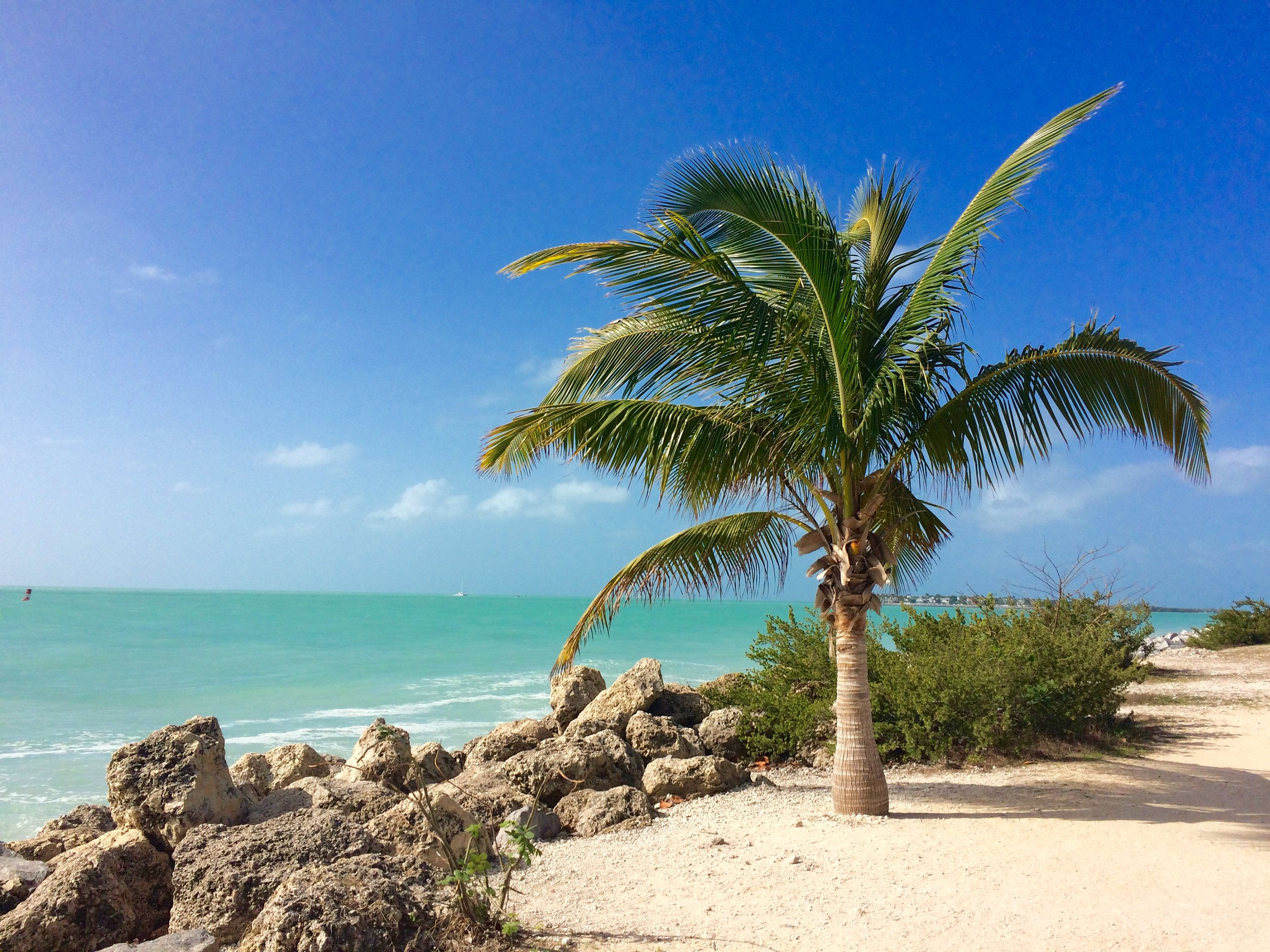 Key West Fort Zachary Taylor State Park Ft Zachary Taylor Etsy In 2021 State Parks Beach Photography Key West