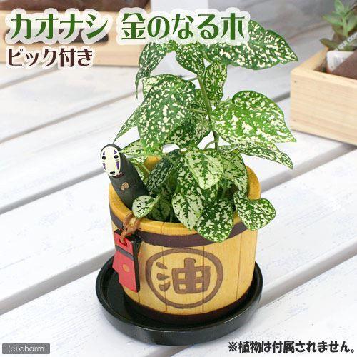 Ghibli planter Pick with Kaonashi Japan Spirited Away Japan