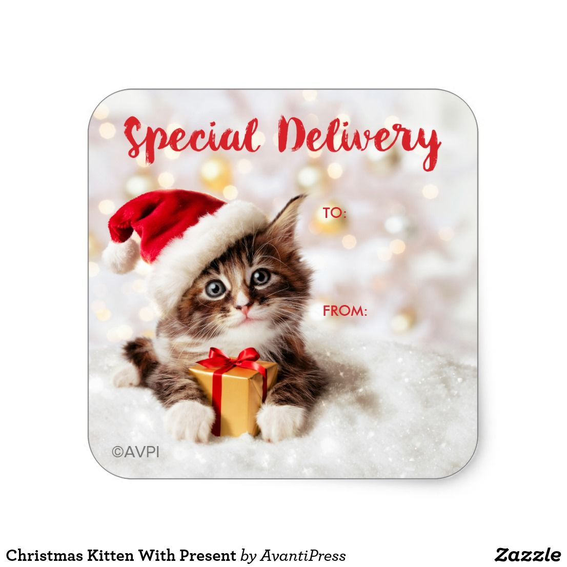 Christmas Kitten With Present Square Sticker Zazzle Com Christmas Kitten Christmas Pet Photos Christmas Stickers