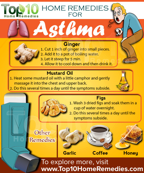 Natural Ways To Treat Asthma In Cats