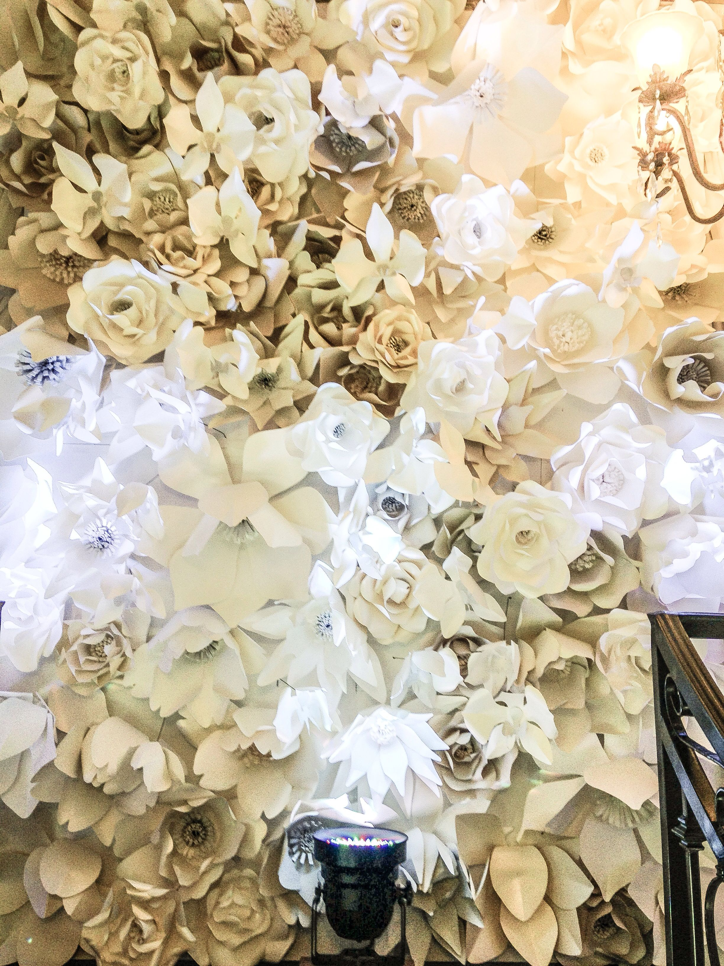 White paper backdrop from Mon Amour Banquet Anaheim Ca  PHOTO