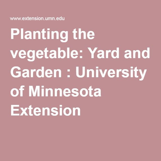planting the vegetable yard and garden university of minnesota extension - Vegetable Garden Ideas Minnesota