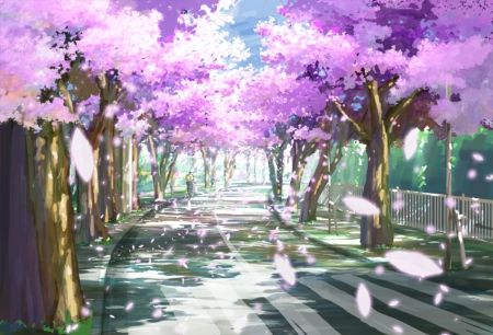 Blossom Path - Desktop Nexus Wallpapers