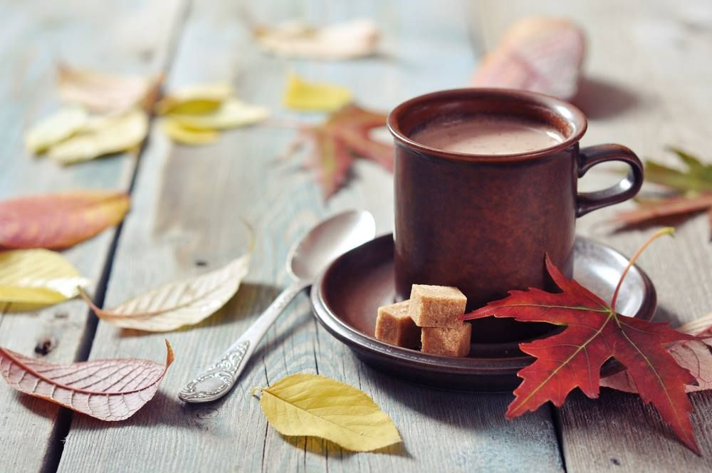 Welcome to fall! What's your favorite thing about this season?