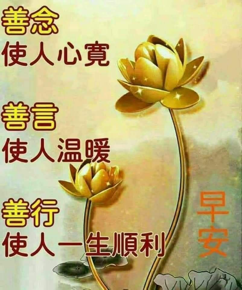 Pin by May on Good Morning Wishes (Chinese) Morning
