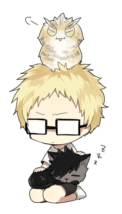haikyuu anime owl anime wallpaper hd