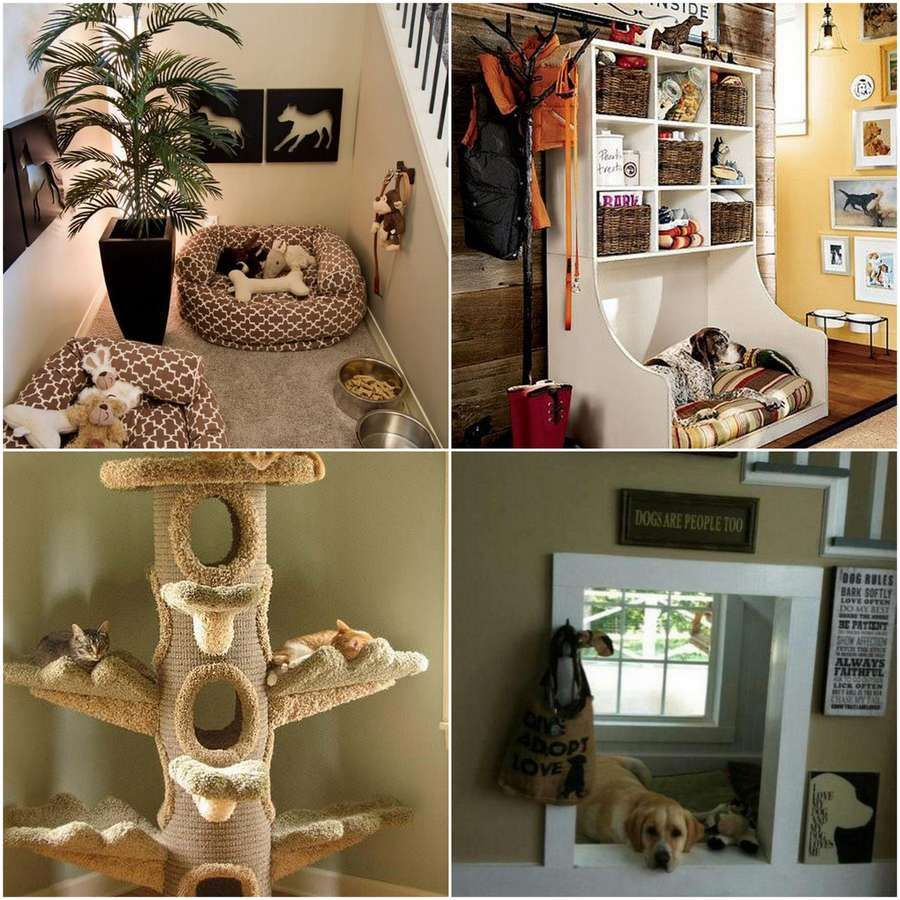 Ideas for a Pet Friendly Home | Pet Home Friendly | Pinterest