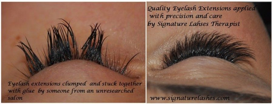 signature lashes by expertly trained master lash artist, classic ...