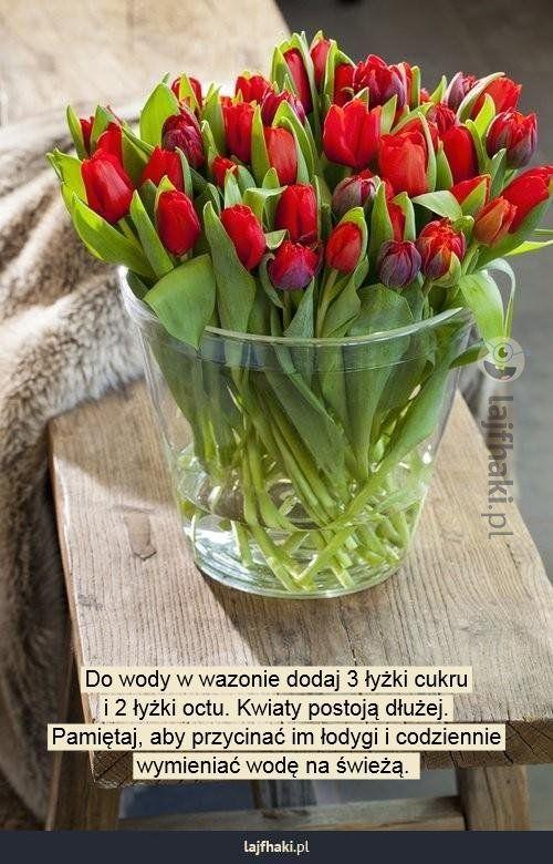 Jak Przedluzyc Zycie Kwiatow Cietych Do Wody W Wazonie Dodaj 3 Lyzki Cukru I 2 Lyzki Octu Kwiaty Postoja Dluzej Pamietaj Tulips Pretty Flowers Red Tulips