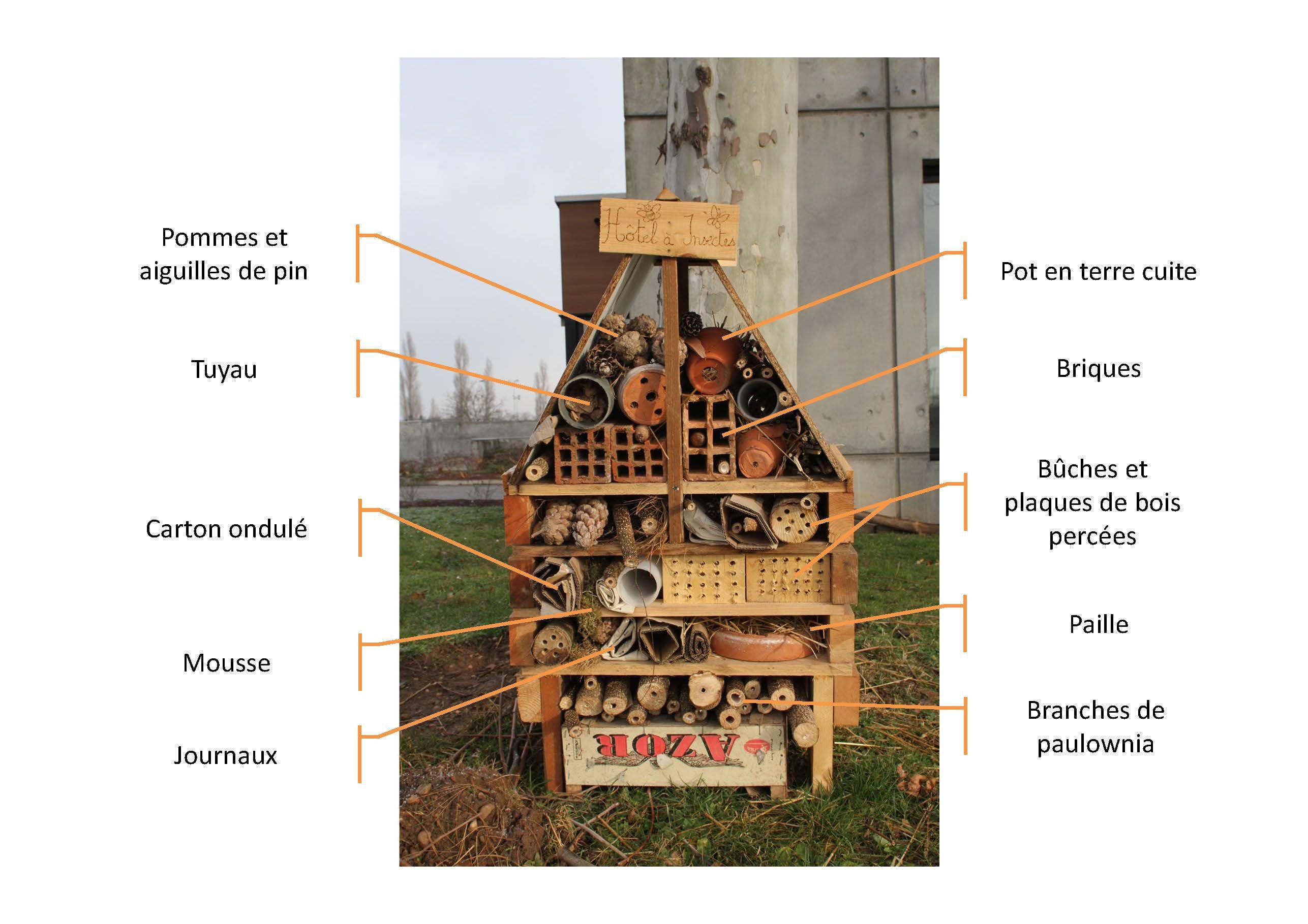 Hotelinsectes farming garden h tel insectes insectes et maison insecte - Maison a insectes plan ...