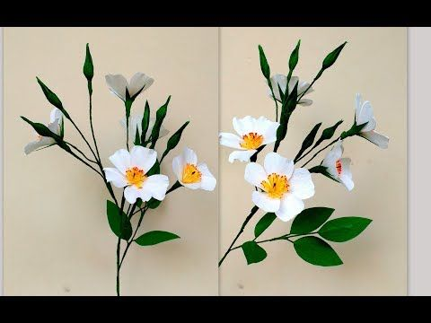 How to make paper flowers musk rose rosa moschata flower 196 how to make paper flowers musk rose rosa moschata flower 196 mightylinksfo