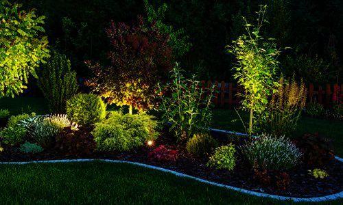 Outdoor Landscape Lighting Orlando That Luma After Sunset