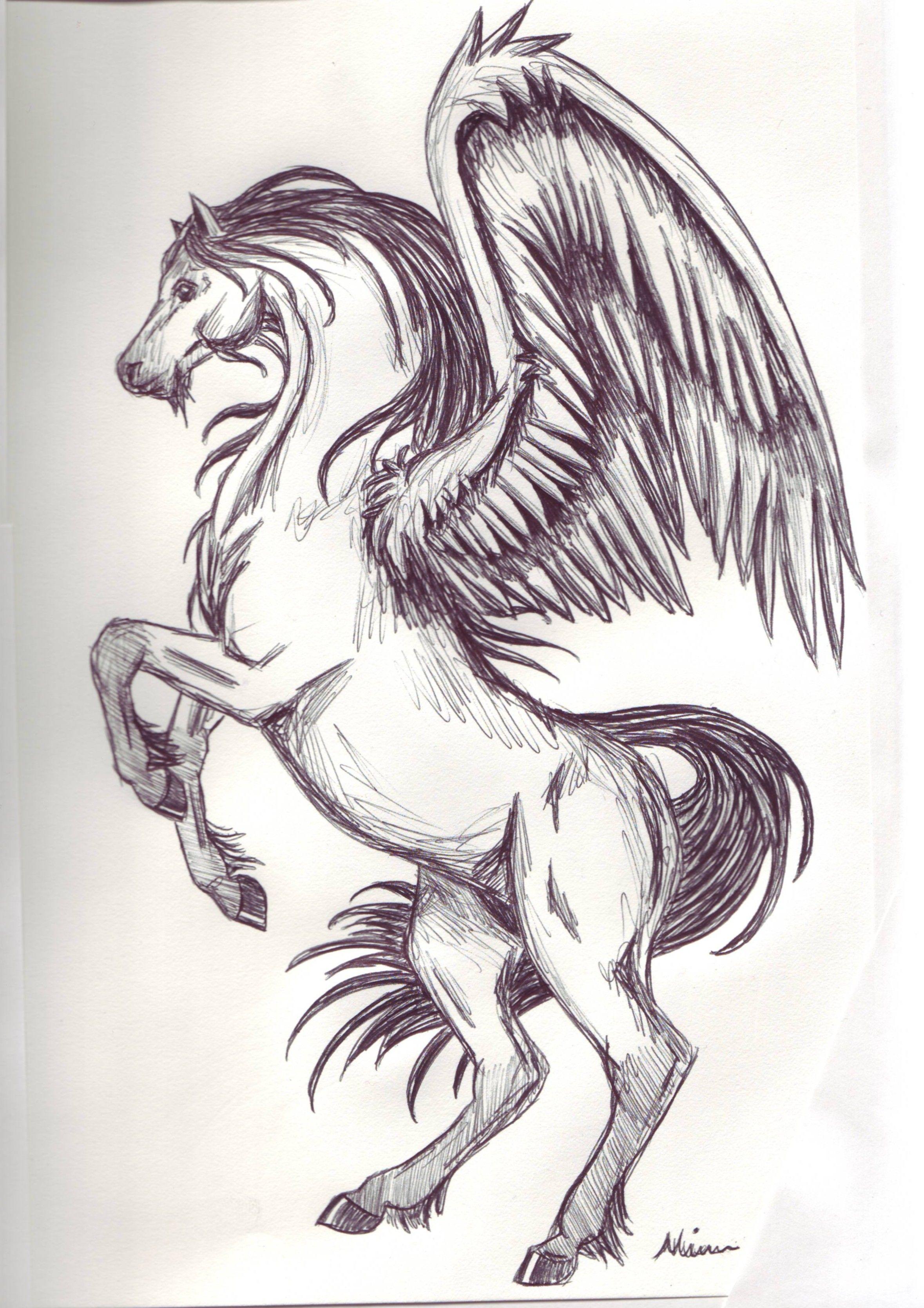 Uncategorized Drawings Of Pegasus google image result for httpfc06 deviantart netfs9i2006029 art drawings