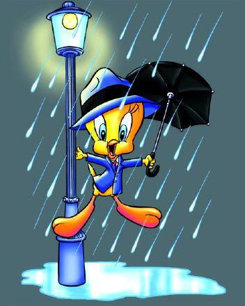 Tweety Tweety Bird Quotes Tweety Singing In The Rain