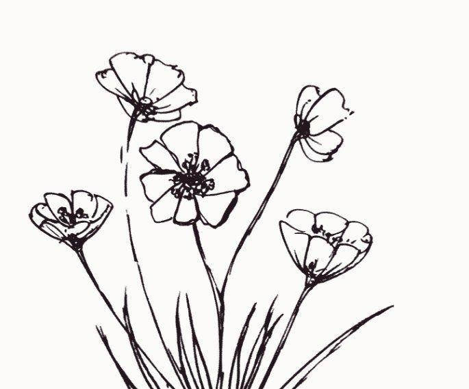 Contoh Gambar Bunga Yg Mudah Digambar di 2020 | Monochrome ...
