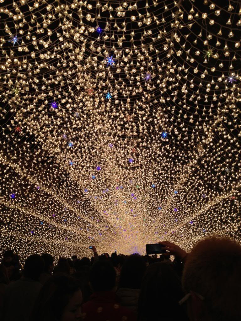 Japan Lights Festival