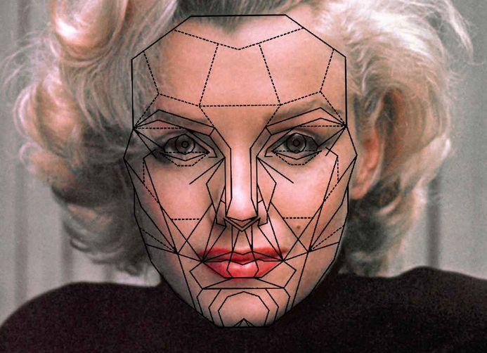 Perfect Face Diagram Google Search Makeup Tips Pinterest
