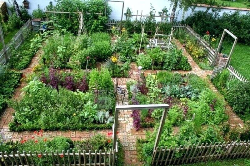 Bauerngarten Anlegen Welche Pflanzen Garten Und Bauen In Wohndesign Albrecht Offnungszeiten A With Our Plants Most Beautiful Gardens Vegetable Garden Design