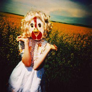 chicken ©pamela klaffke