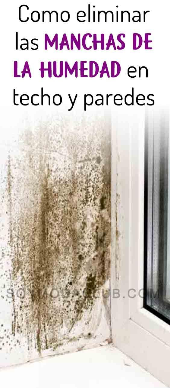 El Tener La Casa Limpia Y Libre De Humedad Y Moho En Techos Y Paredes No Sólo Responde A Una Cuestión De Higiene O De Estética De U Clean House Stains