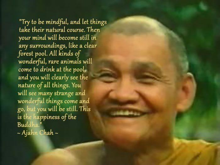 """""""Try to be mindful, and let things take their natural course. Then your mind will become still in any surroundings, like a clear forest pool. All kinds of wonderful, rare animals will come to drink at the pool, and you will clearly see the nature of all things. You will see many strange and wonderful things come and go, but you will be still. This is the happiness of the Buddha."""" ~ Ajahn Chah ~"""