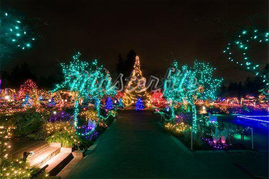 7969f3abe8cacb84179c9c3a62876873 - Van Dusen Botanical Gardens Christmas Lights