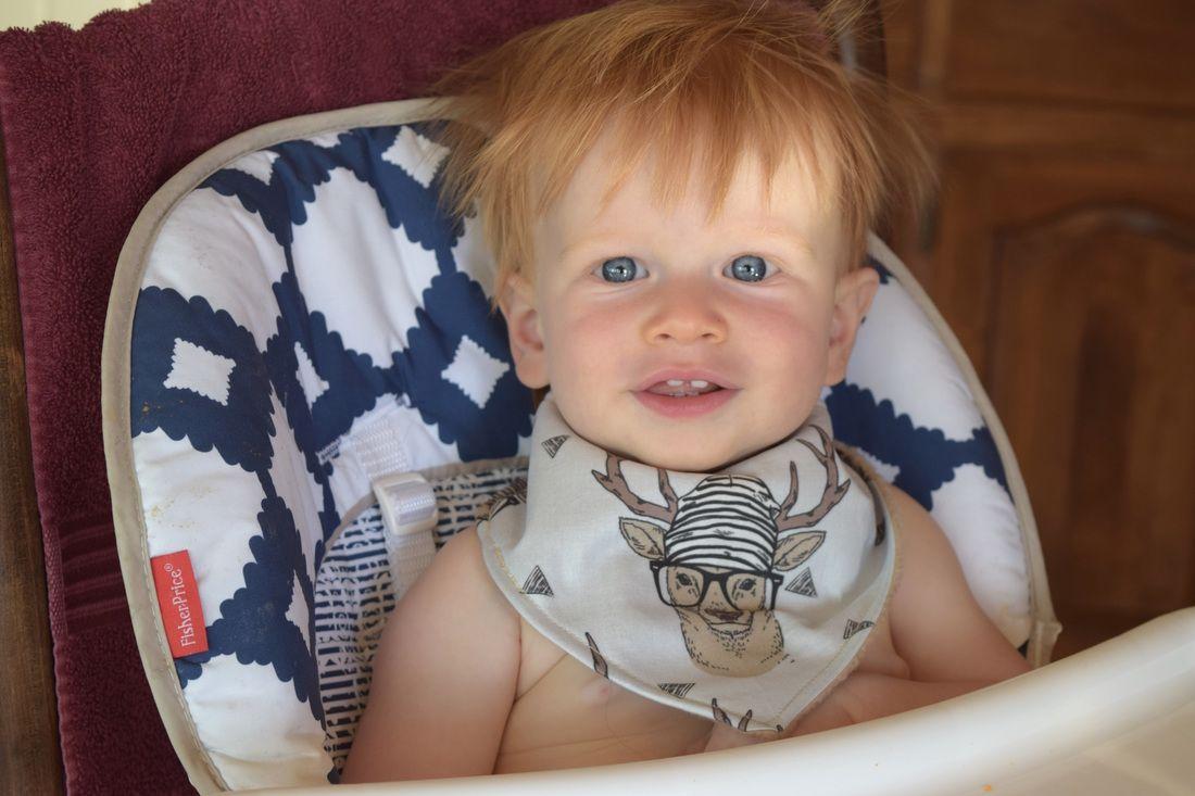 Drool Worthy Baby Bibs handmade in western Montana