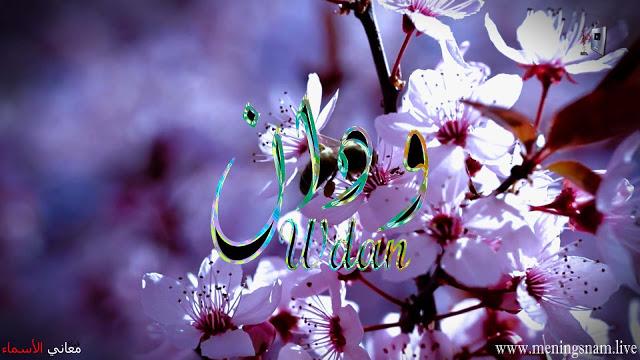 معنى اسم ودان وصفات حاملة هذا الاسم Wdan In 2021 Jewelry Plants Crown Jewelry