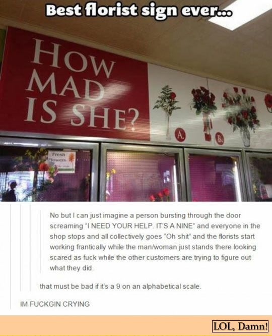 "A clever #florist uses ""how mad is she"" as slogan for her #flower shop, so customer can choose different #bouquet based… http://ibeebz.com"