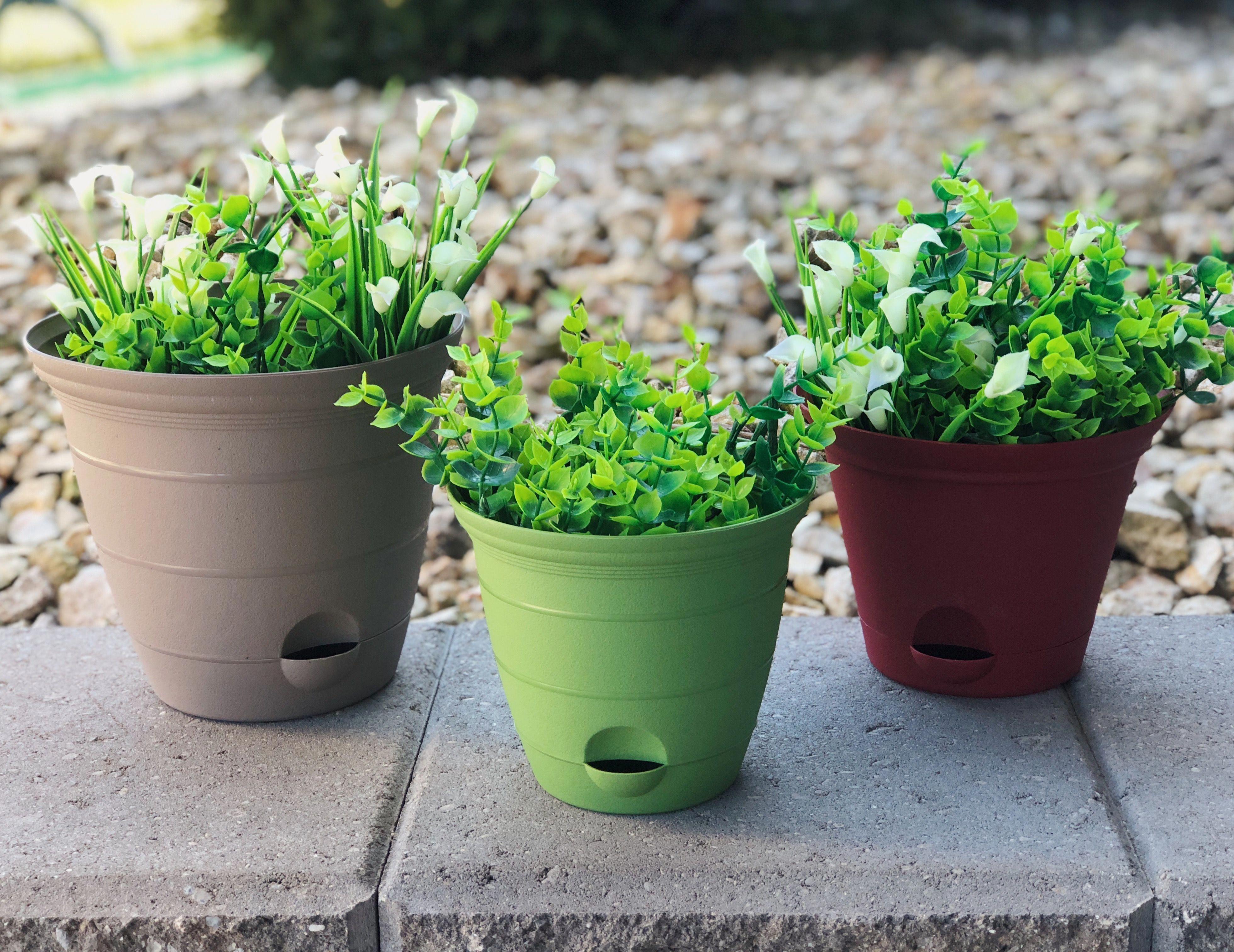 Misco 8 Inch Self Watering Terra Flower Plant Pot Garden