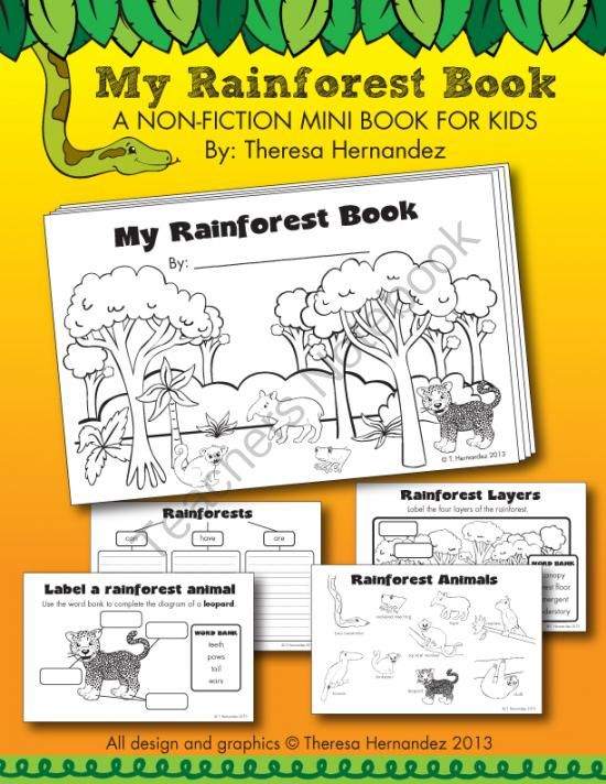 My Rainforest Book From First Grade Is Sweet On