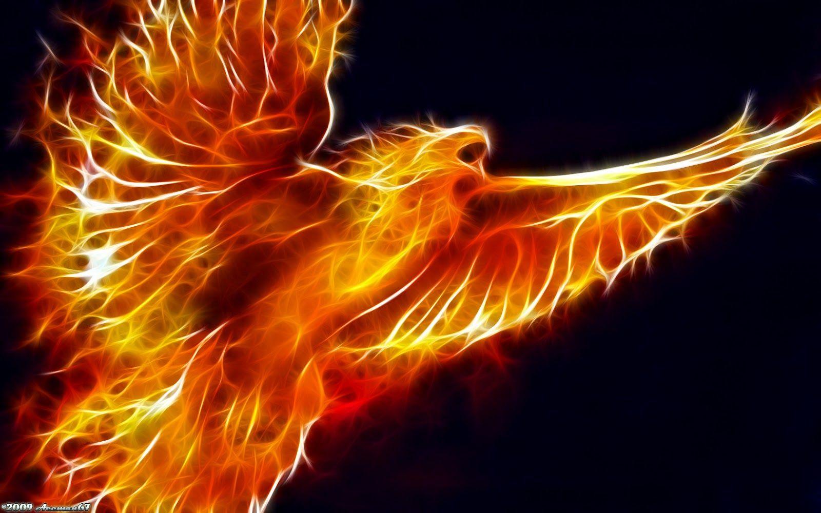 Wings Of Flight Fire Art Fire Bird Bird Wallpaper