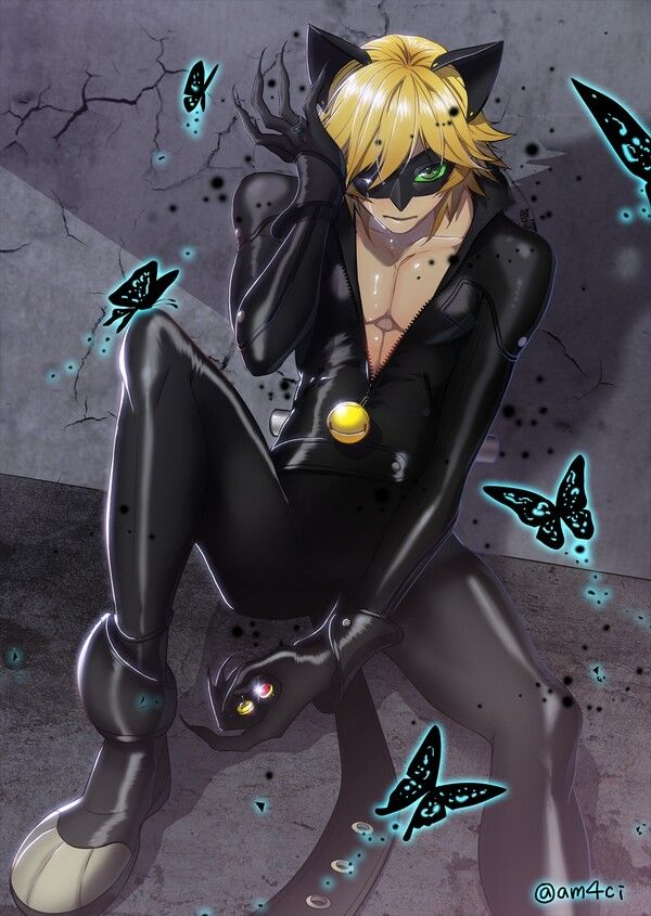 Pin By Lily Unverzagt On Miraculous Ladybug Lady Noir Pinterest