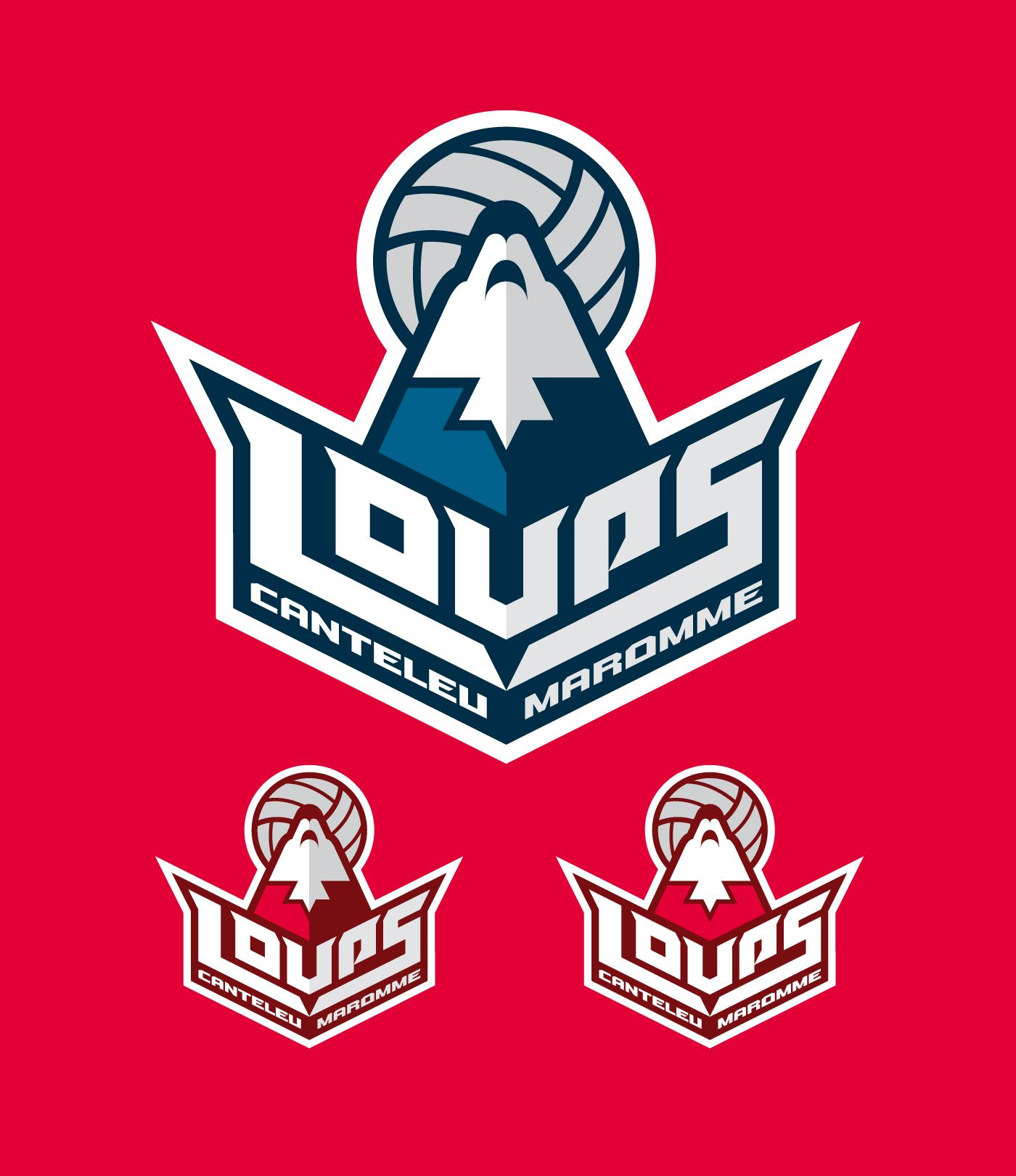 Loups Canteleu Maromme French Volley Ball Team On Behance Sports Badge Team Logo Sports Logo