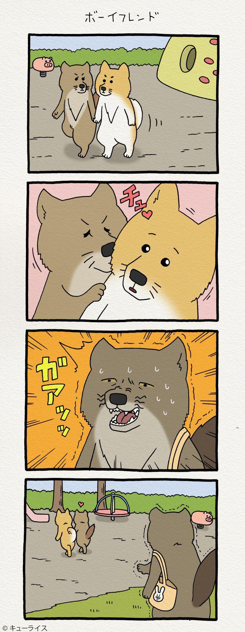 Short Story おしゃれまとめの人気アイデア Pinterest Meo Meo チベットスナギツネ スナギツネ スキウサギ