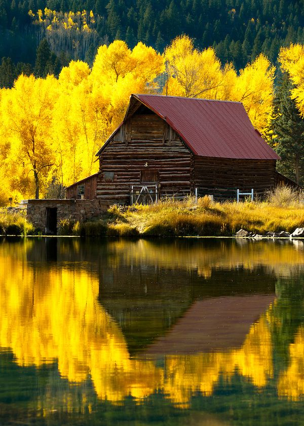 Reflections of western life in autumn. Filename: Lake-City-Barn-Reflection-3123.jpg