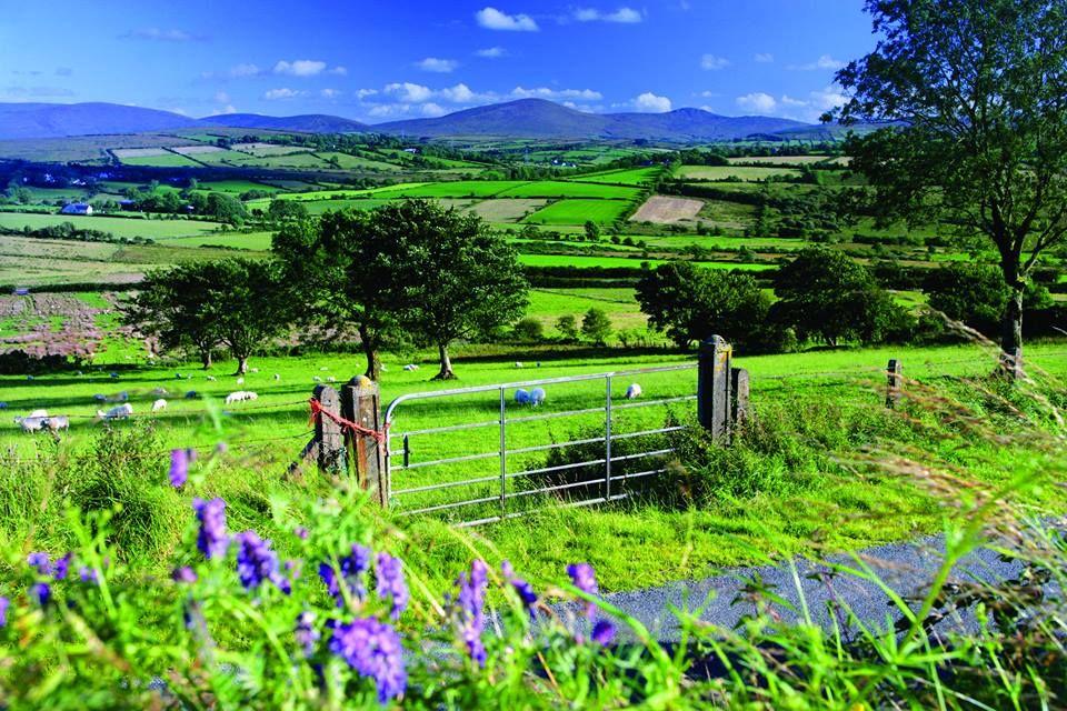 Sperrin Mountains in Tyrone, Ireland.