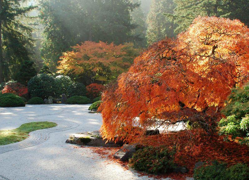 impresionantes jardines japoneses en el Mundo Portland United FC
