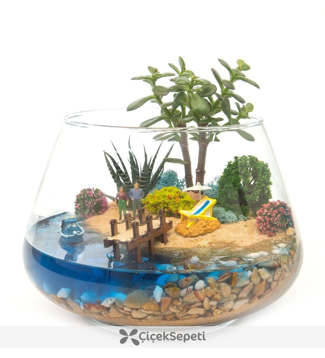Minigarten Im Glas mahmut kırnık.2326 | floral art | pinterest | mini garten